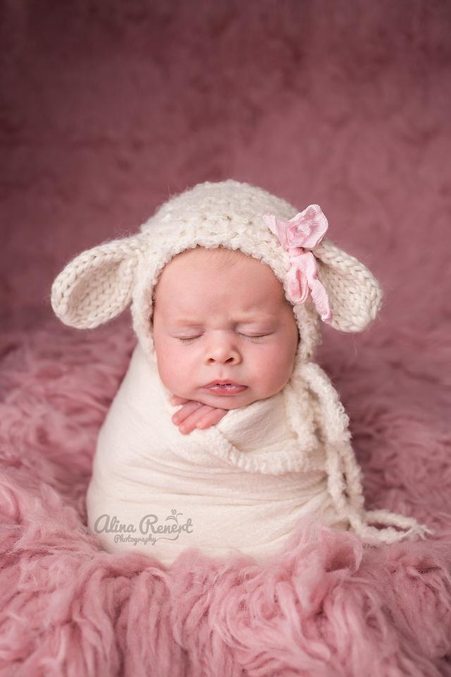 Chicago Newborn Photographer Alina Renert