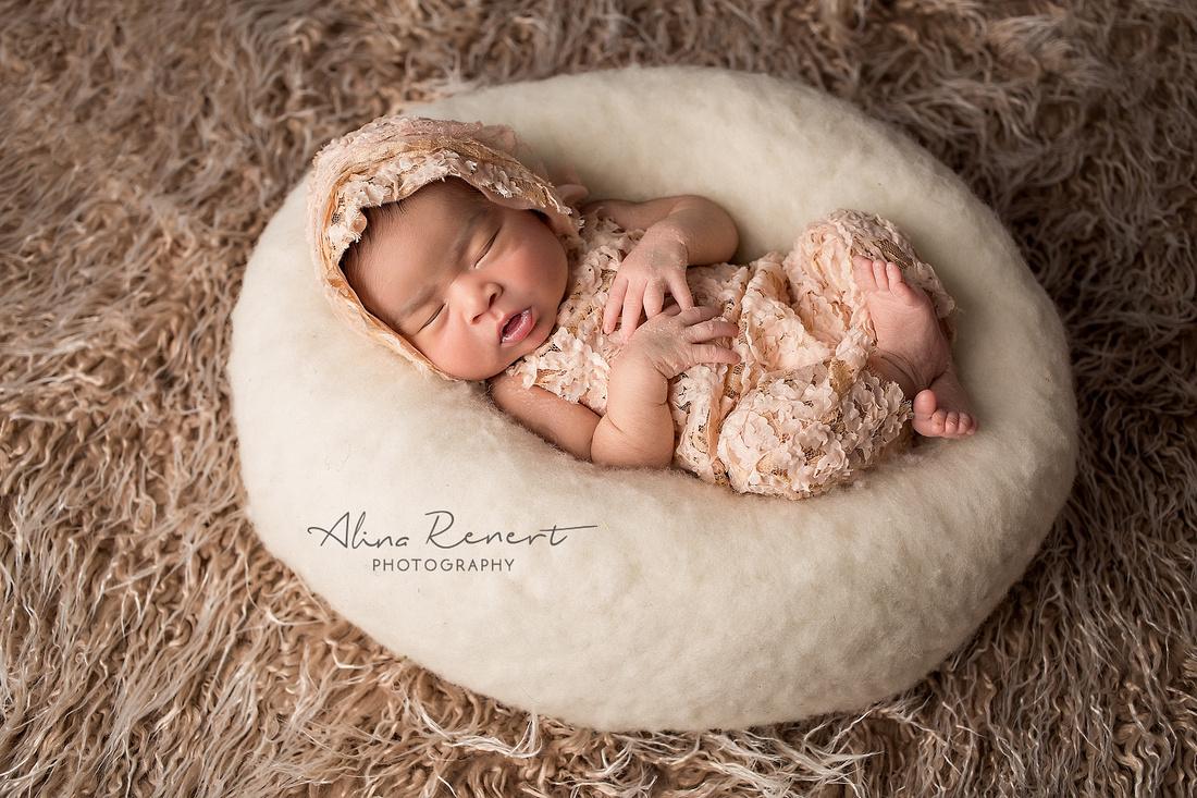 chicago newborn photographer