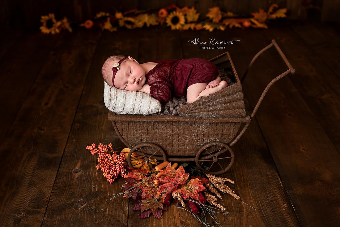 Chicago Newborn Photographer Alina Renert - Camila-78 copy