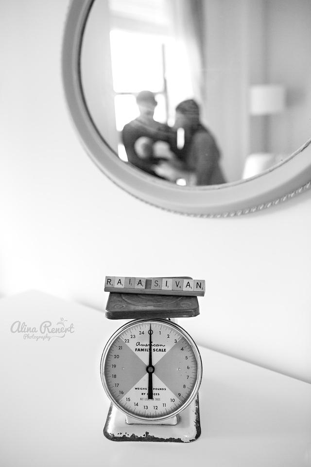 Chicago, IL Photographer - Alina Renert Photography
