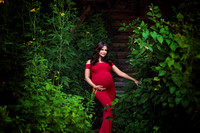 Chicago Outdoor Maternity Session - Niala - Alina Renert Photography-33 copy