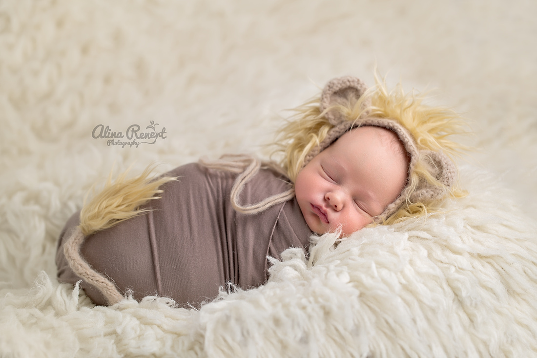 Chicago IL Newborn Photographer