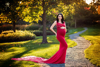 Chicago Outdoor Maternity Photograpehr - Mariya- Alina Renert Photography-46 copy