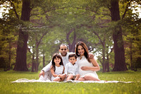 Chicago Outdoor Family Maternity Photographer - Alina Renert Photography-1-2 copy